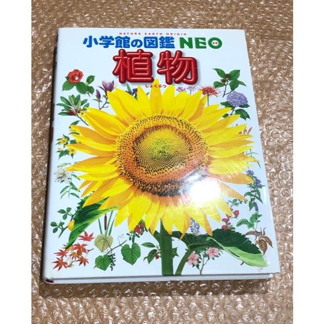 小学館(ショウガクカン)の小学館の図鑑 NEO 植物 エンタメ/ホビーの本(絵本/児童書)の商品写真