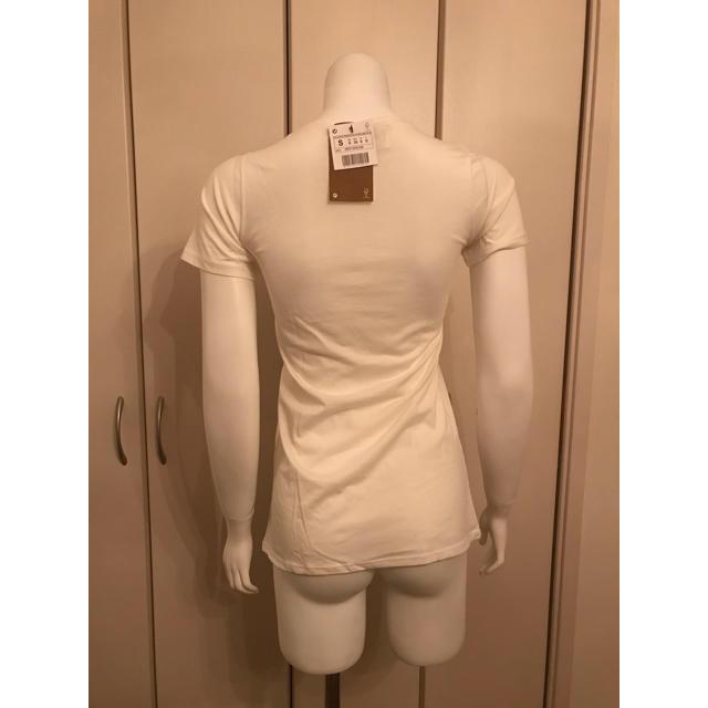 ZARA(ザラ)の新品 チワワTシャツ  レディースのトップス(Tシャツ(半袖/袖なし))の商品写真