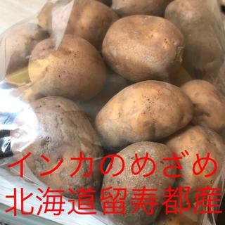 ☆北海道☆留寿都産☆インカのめざめ☆じゃがいも☆約1kg☆(野菜)