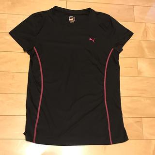 プーマ(PUMA)の【美品】プーマ レディース Tシャツ Lサイズ(ウェア)
