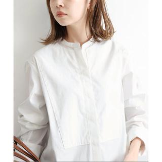 IENA - ENA バンドカラーロングシャツ 36サイズ