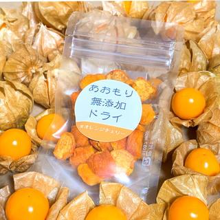 ☆調味料・添加物不使用☆ ドライオレンジチェリー 20g/1パック 青森県産(野菜)