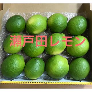 瀬戸田レモン 特別栽培レモン 国産レモン(フルーツ)