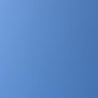 patagonia - パタゴニア レトロパイル フリース