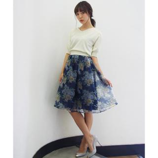ダズリン(dazzlin)のダズリン ブーケ花柄オーガンジースカート(ひざ丈スカート)