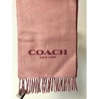 コーチ(COACH)の2019新作 COACH マフラー ピンク(マフラー/ショール)