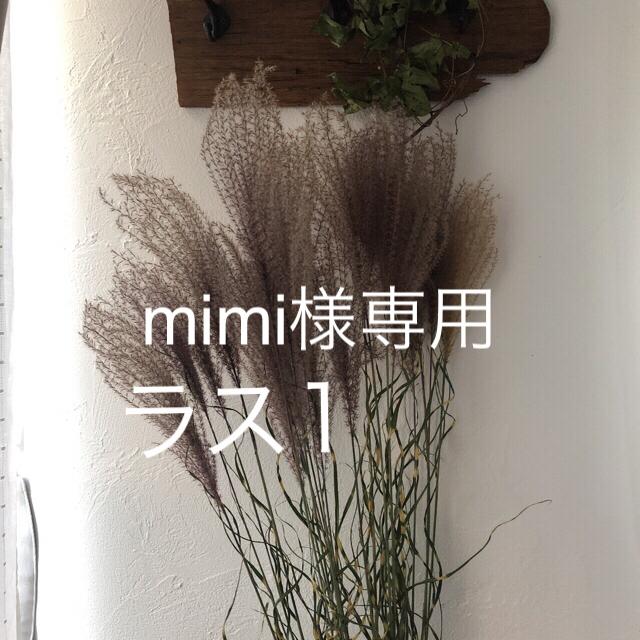 mimi様専用 ハンドメイドのフラワー/ガーデン(ドライフラワー)の商品写真