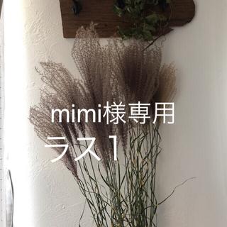 mimi様専用(ドライフラワー)