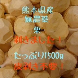 【即購入OK】熊本県産 むき栗 1500g☆無農薬・有機栽培★(フルーツ)
