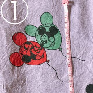 ディズニー(Disney)のrkri様専用(生地/糸)