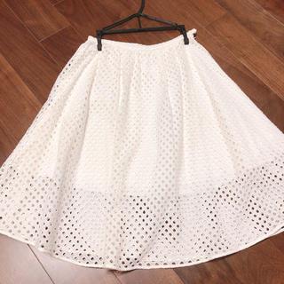 チェスティ(Chesty)のチェスティ コットン100%スカート(ひざ丈スカート)