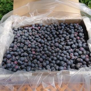 冷凍ブルーベリー2キロ(フルーツ)