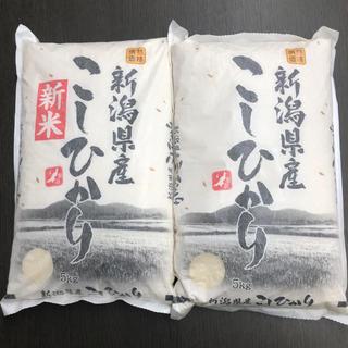米 10kg 新潟県産 こしひかり コシヒカリ 新米を含む ゆうパック 匿名可能(米/穀物)
