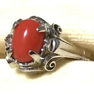 天然赤珊瑚 silver リング 約10号(リング(指輪))