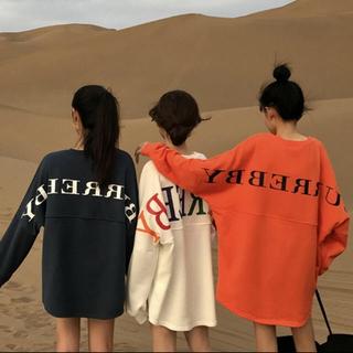 ザラ(ZARA)のレディース ロンT ワンピース 韓国服(Tシャツ(長袖/七分))