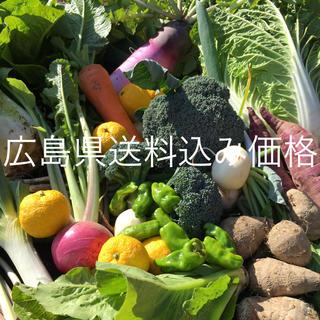 野菜BOX  Mサイズ  広島県送料込み価格(野菜)