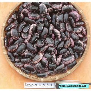 本年度北海道寒冷地産紫花豆1kg (野菜)