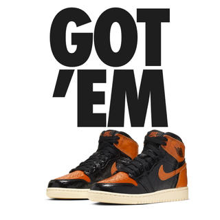 ナイキ(NIKE)のAIR JORDAN 1 SHATTERED BACKBOARD 25(スニーカー)