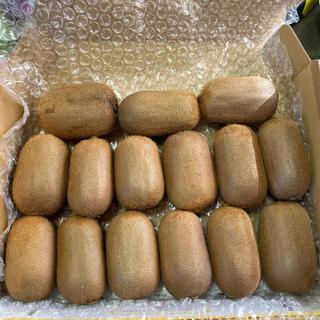 キウイ農家の作った美味しいキウイフルーツ15個入り(フルーツ)