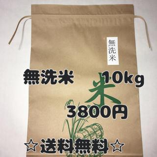 無洗米 10キロ(米/穀物)