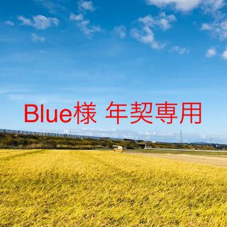 【Blue様 年契専用】令和2年度 ひとめぼれ精米25kg×7(米/穀物)