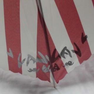 ランバンオンブルー(LANVIN en Bleu)のランバンオンブルー 傘 長傘 雨傘 耐風傘 親骨の長さ60cm タグ付き 最安値(傘)