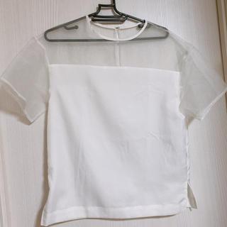 ルシェルブルー(LE CIEL BLEU)のルシェルブルー トップス(シャツ/ブラウス(半袖/袖なし))