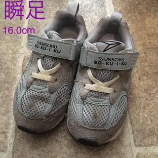 ムーンスター(MOONSTAR )の瞬足 そくいく 16.0cm スニーカー 子供靴 ウォーキングシューズ(スニーカー)