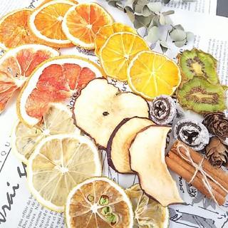 ドライフルーツ7種花材★オレンジキウイみかんレモンかぼす押しフルーツ(ドライフラワー)