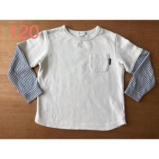 サンカンシオン(3can4on)の3can4on 120 ストライプ  × 白 長袖 Tシャツ(Tシャツ/カットソー)