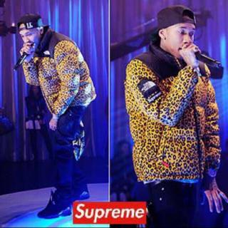 シュプリーム(Supreme)のSupreme×THE NORTH FACE leopard nuptse (ダウンジャケット)