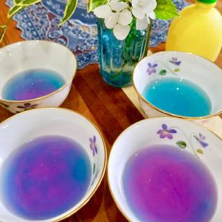 バタフライピー 50g(茶)