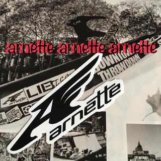アーネット(Arnette)のarnetteアーネットUS限定snow型抜きウイングアイコンロゴステッカー(アクセサリー)