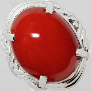 赤珊瑚 16ミリ 12.8ミリ Pt900 プラチナ リング 指輪 サンゴ 7号(リング(指輪))