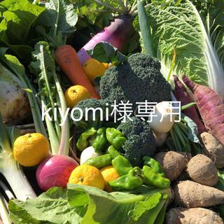 野菜BOX Lサイズ  kiyomi様専用(野菜)