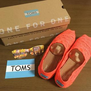 トムズ(TOMS)のTOMS☆25㎝試着のみ(スニーカー)
