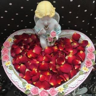 小さなミニ薔薇の花びら2g(小さめ)ドライフラワー★花弁ミニローズ押し花素材にも(ドライフラワー)