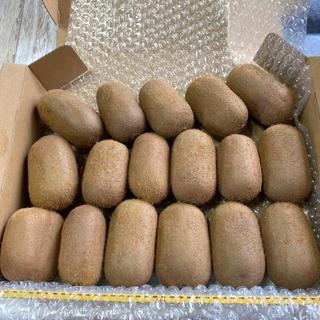 【行列のできるキウイ農家のキウイフルーツ】キウイフルーツ17個入り(フルーツ)