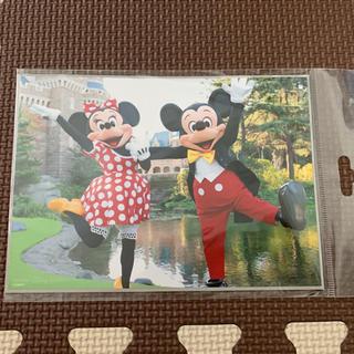 ディズニー(Disney)のディズニーランド 写真(キャラクターグッズ)