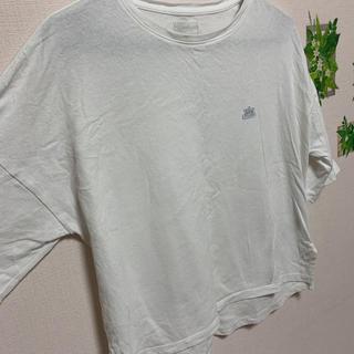 リー(Lee)のLee&earth music&ecology Tシャツ 美品(Tシャツ(半袖/袖なし))