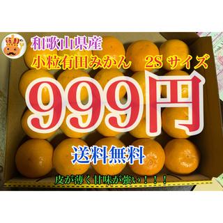 和歌山県産 有田みかん 日南みかん 2S サイズ 送料無料 みかんキング(フルーツ)