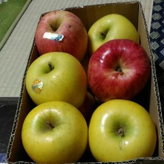 処分価格 早いものがち 家庭用 りんご ハック シナノゴールド 箱込み4.2kg(フルーツ)