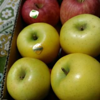 ご家庭用 リンゴ 弘前フジ シナノゴールド 箱込み4.3kg(フルーツ)