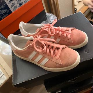 アディダス(adidas)のアディダス キャンパス 23.5 adidas campers pink ピンク(スニーカー)