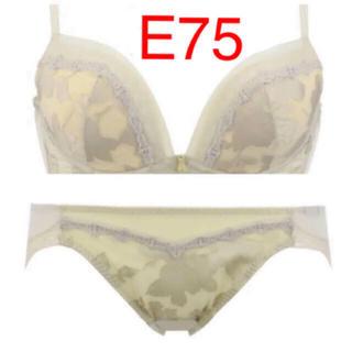 トリンプ(Triumph)の値下げ中‼️トリンプ  ドレス E75Mセット(ブラ&ショーツセット)
