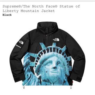シュプリーム(Supreme)のSサイズsupreme north Mountain Jacket(マウンテンパーカー)