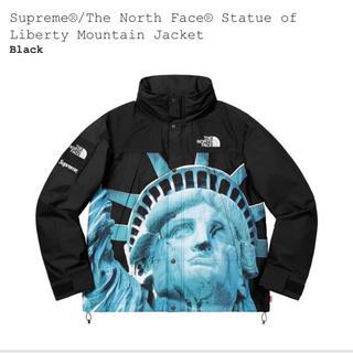 シュプリーム(Supreme)のsupreme×the north face mountain jacket L(マウンテンパーカー)