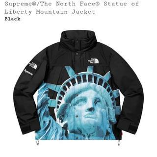 シュプリーム(Supreme)のsupreme×the north face mountain jacket M(ダウンジャケット)
