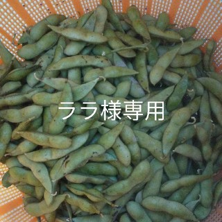 ララ様専用 黒枝豆(野菜)