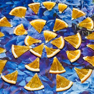 お花屋さんが作ったオレンジチップのドライ 30片set(ドライフラワー)